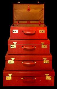 swaine adeny brigg luggage