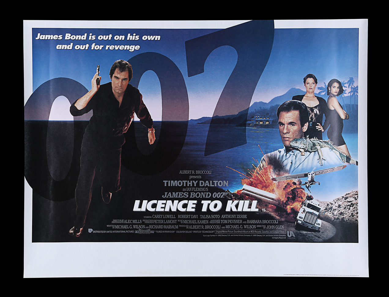 Licence to kill poster win